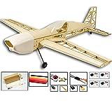 DW Hobby 2019 Upgrade Extra330 RC Flugzeug Kit zum Bauen, 1000 mm Spannweite Laser geschnittenes Balsaholz-Modellflugzeug, elektrisches funkgesteuertes Flugzeug Flugzeug für Erwachsene