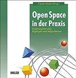 Open Space in der Praxis (Beltz Weiterbildung)