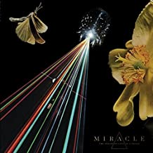The Strife of Love in a Dream (Black Vinyl) [Vinilo]