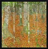 Bild mit Rahmen: Gustav Klimt,