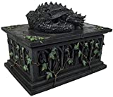 Nemesis Now Dragon Tarot Card Box Articolo decorativo grigio
