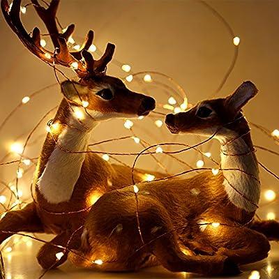 Kupferdraht Lichterkette|InnooLight 200er 20M LEDWasserdichte und Dimmbare Sternenhimmel-Lichterkette mit 0,3 M Zuleitungskabel und 24-Tasten Fernbedienung,Innen- und Außendeko für Wohnungen, Schlafzimmer, Fenster, Party, Weihnachten, Fest usw.