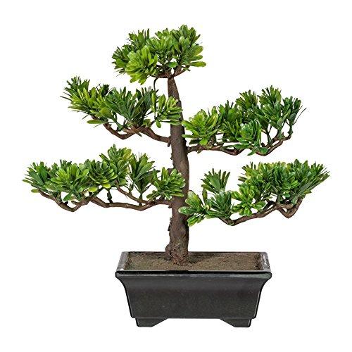 wohnfuehlidee Kunstpflanze Bonsai Podocarpus Grün, Inklusive Kunststoff-Schale, Höhe ca. 28 cm