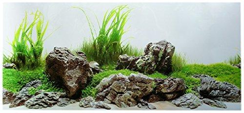 Rückwandfolie 60cm x 30 cm Rückwandposter für Aquarien