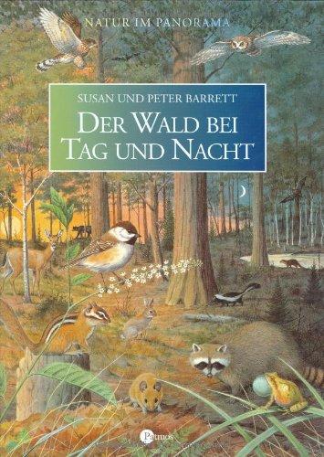Der Wald bei Tag und Nacht: Natur im Panorama (Wald Ein Tag Im)