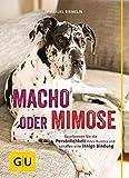 Macho oder Mimose: So erkennen Sie die Persönlichkeit Ihres Hundes und schaffen eine innige Bindung (GU Tier Spezial)