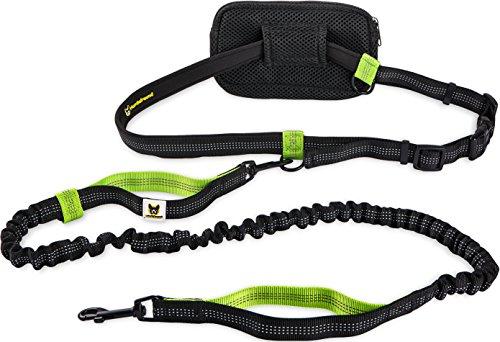 Joggingleine für Kleine Hunde bis 15 kg | Elastische Reflektierende Hundeleine von 110 bis 160 cm Dehnbar | Leine Zum Joggen Laufen Radfahren Wandern