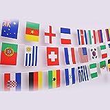 G2PLUS intermational banderas banderines, mundo países bandera con diferentes banderas nacionales 14cm * 21cm para ventiladores de fútbol RUGBY presentación caso, 50 National Flags