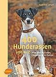 400 Hunderassen von A-Z: Alles über Aussehen, Charakter und Verhalten