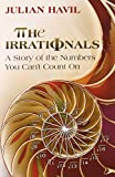 The Irrationals: A Story of the Numbers You Can't Count On