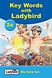 Key Word With Ladybird