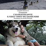"""Conoscere L'Alaskan Malamute - Il Fedele """"Amico"""" del Grande Nord"""