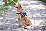 Alimao Brustgeschirre für Hunde, Oxford-Material, einfach zu handhaben, solide Verschluss, Griff und Leine. Perfekt für Assistenz, Training, tägliches Training, Schwarz (L)