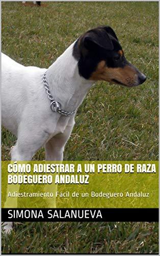 Cómo Adiestrar a Un Perro de Raza Bodeguero Andaluz ...