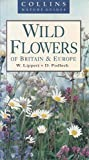 Wild Flowers of Britain and Europe