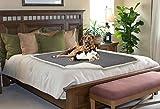 Pawsse Hundedecke Waschbar Hundebett Wasserdicht Hundekissen Schlafdeck Camping Decke für Grosse Hunde Katzen Haustier 50