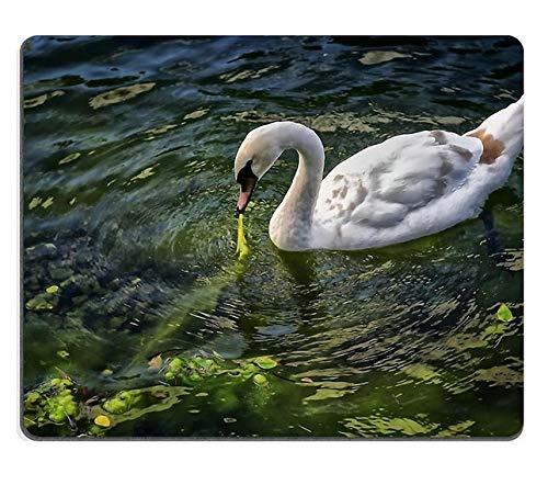 Mauspad Gaming Mauspad Swan Vogel Tiere Wasser See Naturkautschuk Material PN00X3234