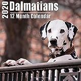 Mini Calendars Mini Calendars