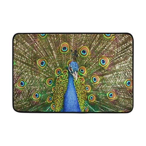 cm Non-Slip Polyester Doormat Portrait of Peacock with Feathers Washable Entrance Rug for Inside Floor Living Room Toilet Patio Garage ()
