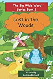 The Big Wide Wood Series Book 1 Lost in the Woods