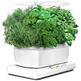 AeroGarden Miracle-Gro - Cosecha con kit de cápsulas semillas de hierbas, 24 x 22 x 38 cm, color blanco