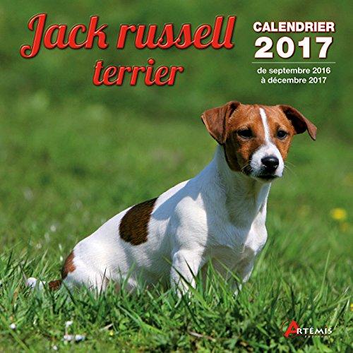 Calendrier jack russell terrier par Collectif