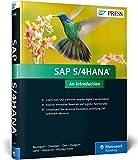 SAP S/4HANA: An Introduction