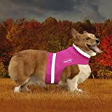 Corky 's Halsbänder see-me Hälfte Hund Weste, klein, Precious Pink