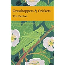 Grasshoppers and Crickets (Collins New Naturalist Library, Book 120)