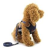 smalllee _ Lucky _ store Kleine Haustiere Hund Katze Vest Denim Harness Puppy soft Mesh Geschirr Leine Set führt