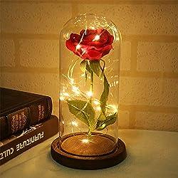 Supertop Multi LED Rose Glass Dome La Bella y la Bestia Rose con base de madera para la decoración del hogar Decoraciones de la boda San Valentín aniversario regalo de la madre