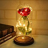 Supertop Multi LED Rose Glass Dome La Bella y la Bestia Rose con base de madera para la decoración del hogar Decoraciones de la boda San Valentín aniversario regalo de la madre
