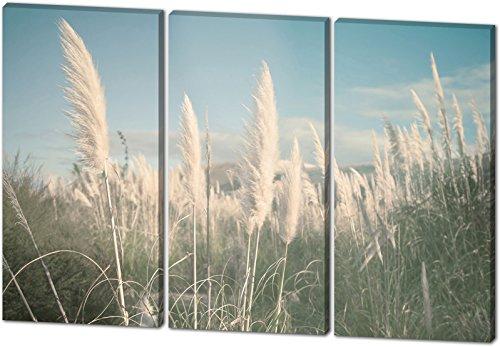 Auf dem Feld, schönes und hochwertiges Leinwandbild zum Aufhängen in XXL - 3 Teiler mit 120cm x 80cm, echter Holzrahmen, effektiver Pigmentdruck, modernes Design für Ihr Büro oder Zimmer