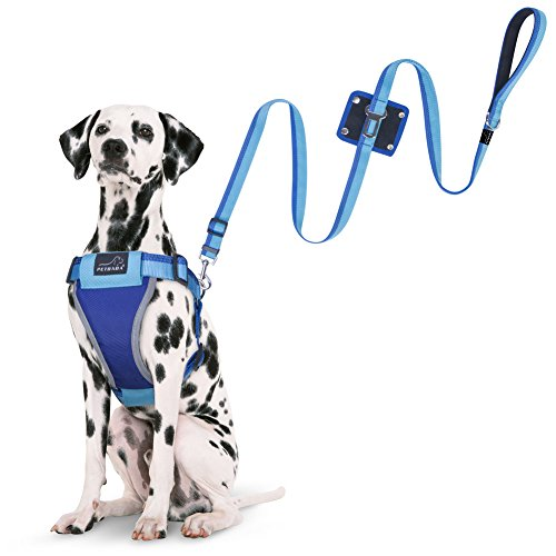 dog-harness-lead-set-petbaba-no-escape-reflective-seat-belt-leash-auto-harness-combo-for-dogs-blue-m