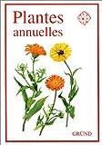 Plantes annuelles