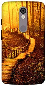 The Racoon Lean printed designer hard back mobile phone case cover for Motorola Moto X Force. (forest roa)