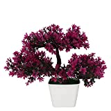 #1: Adaspo Artificial Plant with magenta/green leaves in Melamine Square White Pot(24 cm)
