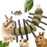 KOBWA Apple Sticks Pet Snacks Chew Toys, Natural Funny Grass Treating Ball Pet Cat Edible Toy Molar and teeth grinding Toy for Rabbits, Chinchillas, Hamsters, Guinea Pigs