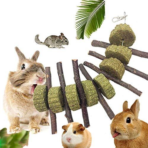 KOBWA Apple Sticks Pet Snacks Kauen Spielzeug, natürliche lustige Gras Behandlung Ball Haustier Katze Essbare Spielzeug Molaren für Kaninchen, Chinchillas, Hamster, Meerschweinchen (Apple Sticks)