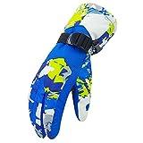 BOZEVON Winterhandschuhe Skihandschuhe Fahrradhandschuhe Motorrad Handschuhe Outdoor Handschuhe Sport Handschuhe Snowboard Handschuhe Für Herren und Damen