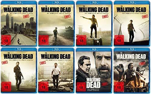 The Walking Dead - Die kompletten Staffeln 1-8 im Set (38 Blu-ray)
