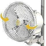 """Best Fans Oscillatings - Secret Jardin Monkey Fan Oscillating 20W 6"""" Clip Review"""