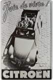 Citroen 2CV Ente France Kult Car Auto Blechschild 20 x 30 Retro Blech 1692