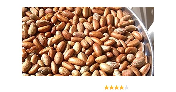 Bitter Kola Nut (Cola Nuts) Fresh Garcinia Kola Approx 400g