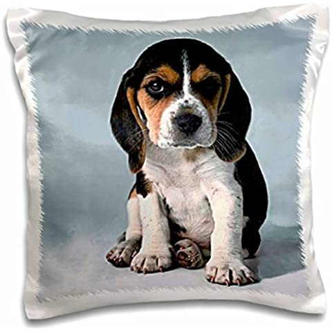 Dogs Beagle - Beagle Pup - 16x16 inch Pillow Case