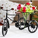 Aafiya Handicrafts Wrought Iron Home Decor Cycle Rikshaw, Fruit Basket & Flower Pot Vases