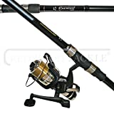 Lineaeffe Carp/Pike Combo 2.75tc Rod And Bait Runner Reel With Line