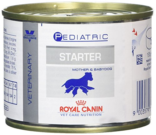 ROYAL CANIN VCN - Pediatric Starter Dog - 12x 195 - Mousse Royal Canin Starter