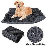 Allisandro Waschbare Hundedecke(100x75cm, Schwarz) luxuriöse Katzen Hunde Kuscheldecke Decke Hundematte Soft weiche zweiseitige Flauschige Haustier-Decke