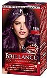Schwarzkopf - Brillance - Coloration Permanente Cheveux Intense - Eclat de Nuit Cerise Noire 888